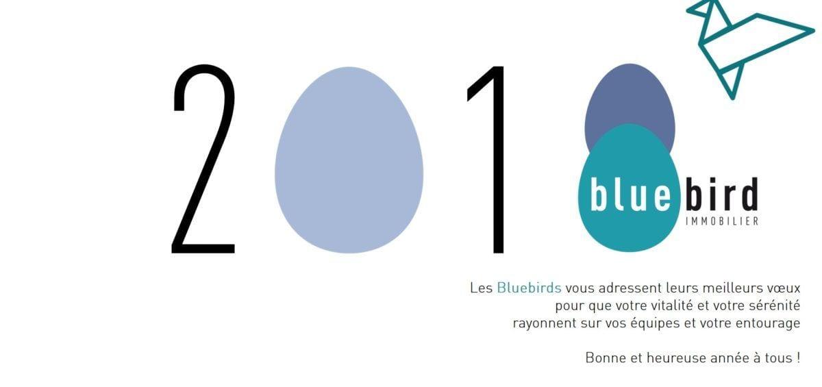 Voeux-2018-bluebird