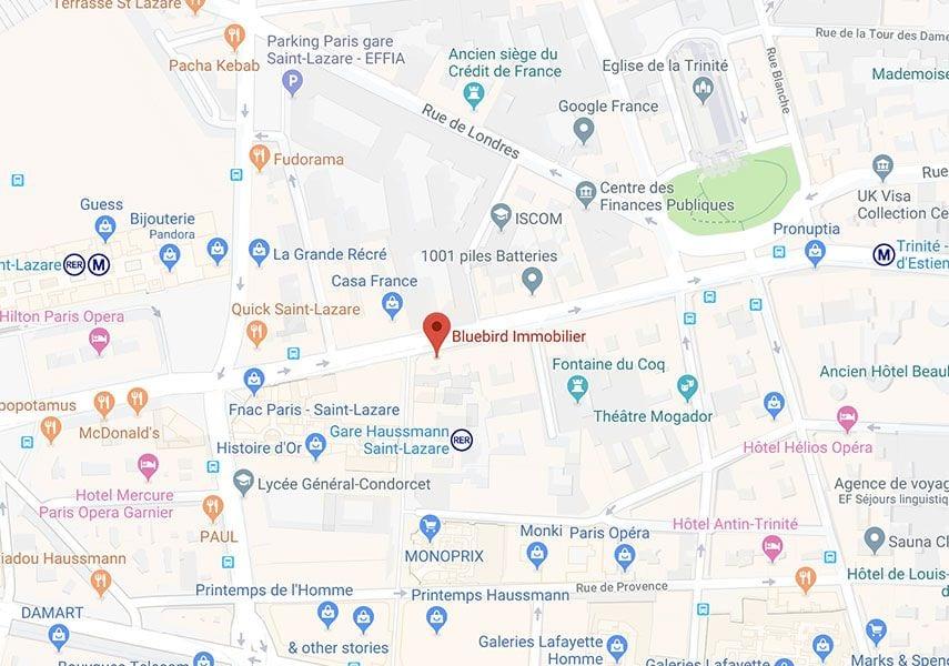 Bluebird Immobilier Google Map